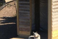 pet-enclosures03-scaled